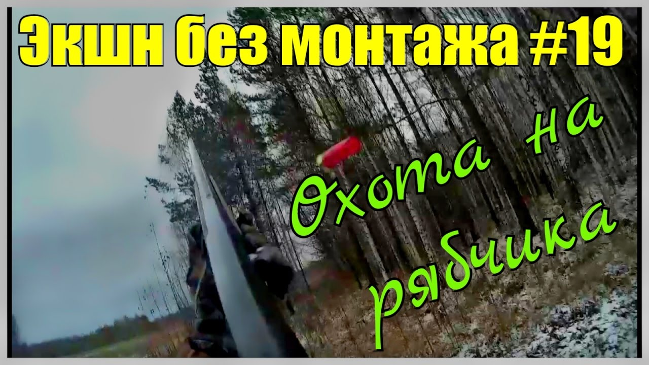 Охота. Экшн без монтажа 19. За рябчиком. Рябчик или кедровка Hunting in Russia